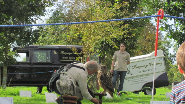newgrange falconry - spirit of folk 2011 (15)