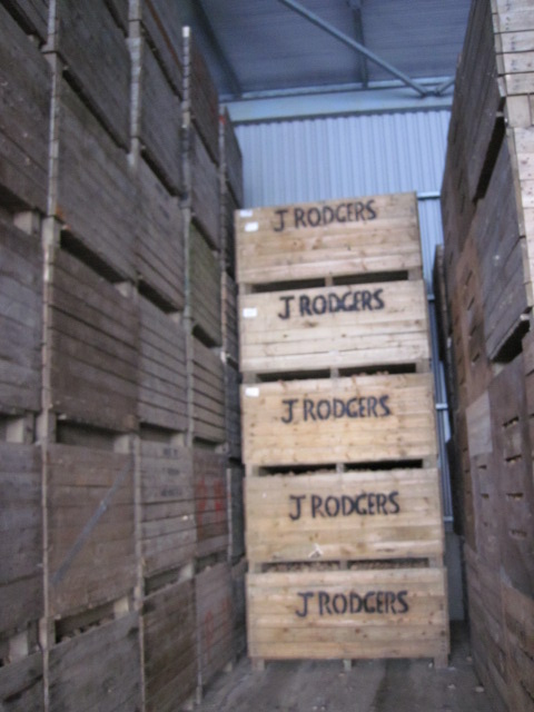 rodgers potato growers (4)