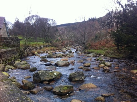 wild camping wicklow (2)