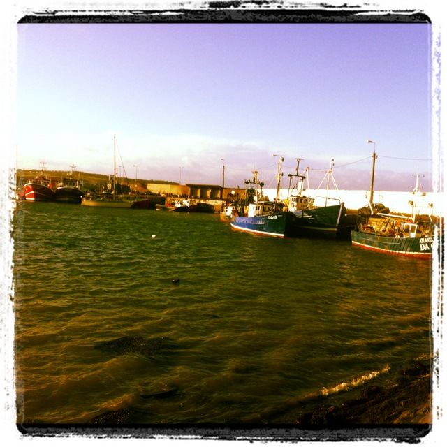 skerries walk (5)