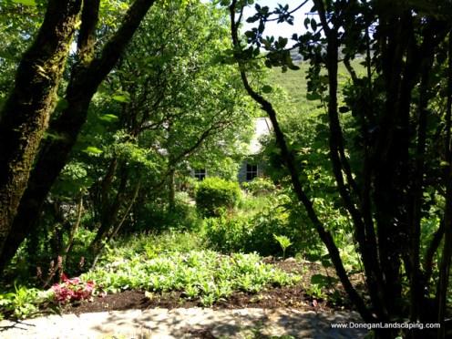 caher bridge garden (14)