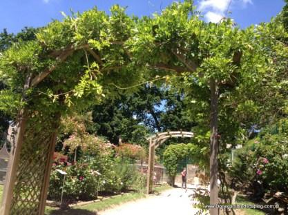 les jardins du val cocherel (19)