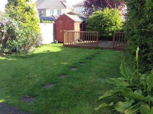 garden before (3)