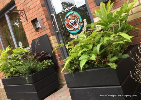 garden-planters-dublin-1
