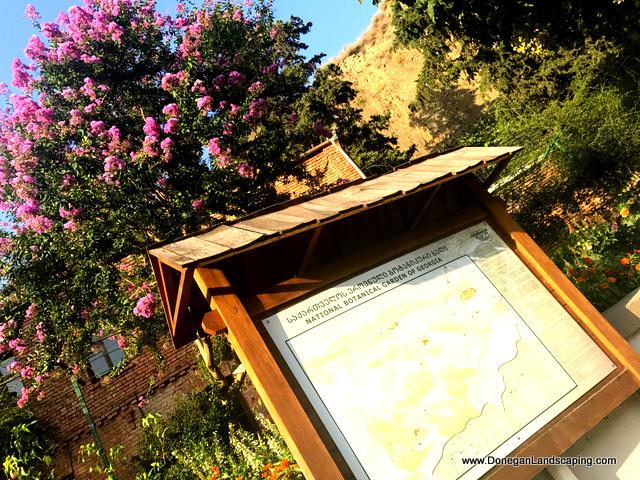 National Botanic Garden of Georgia (9)