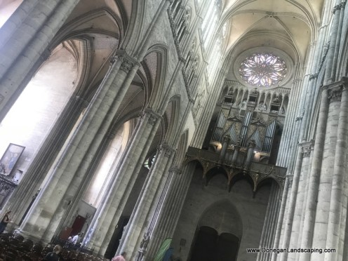Amiens Cathedral (4)