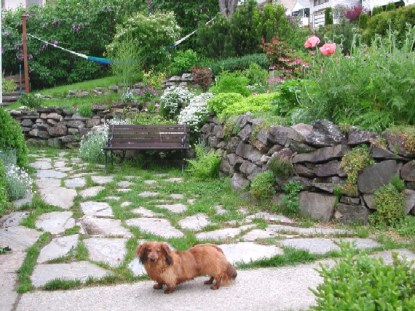 front-yard-and-spud