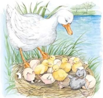 cerita fabel terbaru ibu bebek menemukan satu anaknya lain