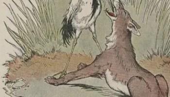 Contoh Cerita Hewan Fabel Burung Bangau dan Seekor Anjing