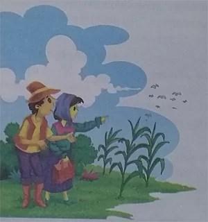 Terjemahan Cerita Rakyat Bahasa Inggris Gagak di Ladang Jagung