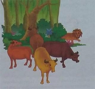 Cerita Tentang Sahabat Empat Ekor Lembu
