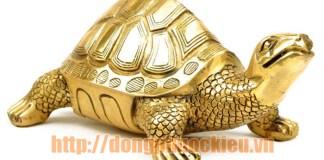 mẫu rùa đồng đẹp