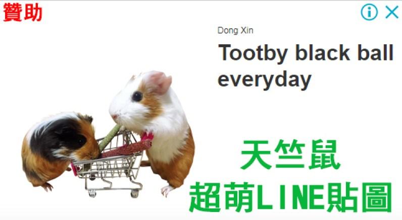 這張圖片的 alt 屬性值為空,它的檔案名稱為 天竺鼠.jpg