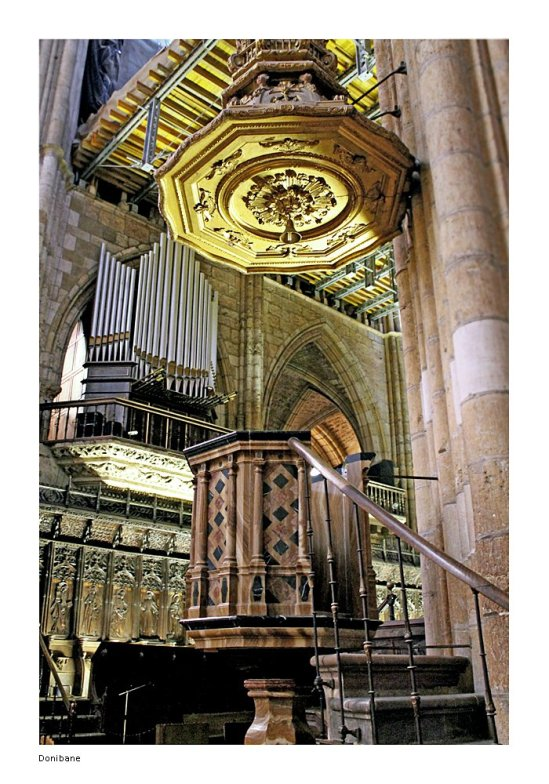 Catedral de León por Donibane