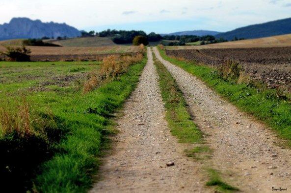 Camino de Valdegovia