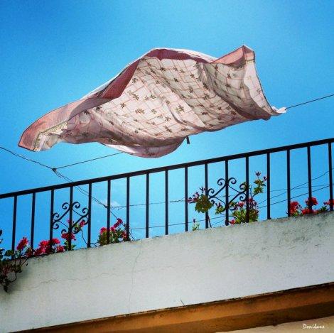 El viento de Marbella por Donibane