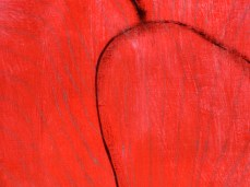 """""""Papaver"""" - DETAIL 1, acrylic, oil on dyed canvas - 218 x 280 cm, 2006"""
