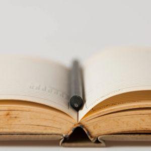 Donika Pentcheva Intellectual Property Law Research