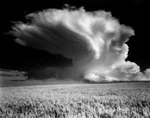 2004104 Thunderhead, WA 2004