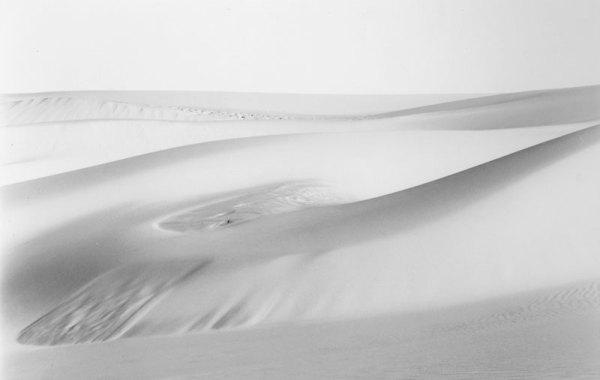 2005168 Light Dune, OR 2005