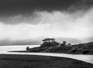 2011078 Tomales Bay, CA 2011