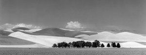 98117 Wheatfield-Cemetery, Prescott, WA 1998