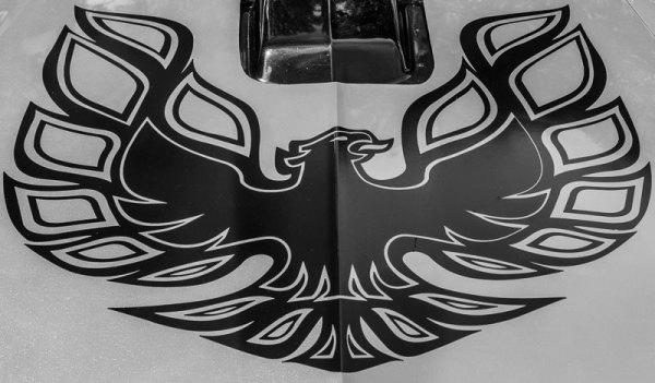 20171400D Pontiac Hood, NM 2017
