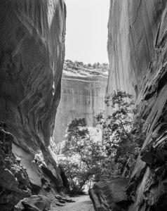 2013041DF Long Canyon, Utah 2013