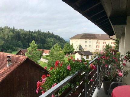 Liechtenstein, Summer 2019 Don Michael Hudson, PhD