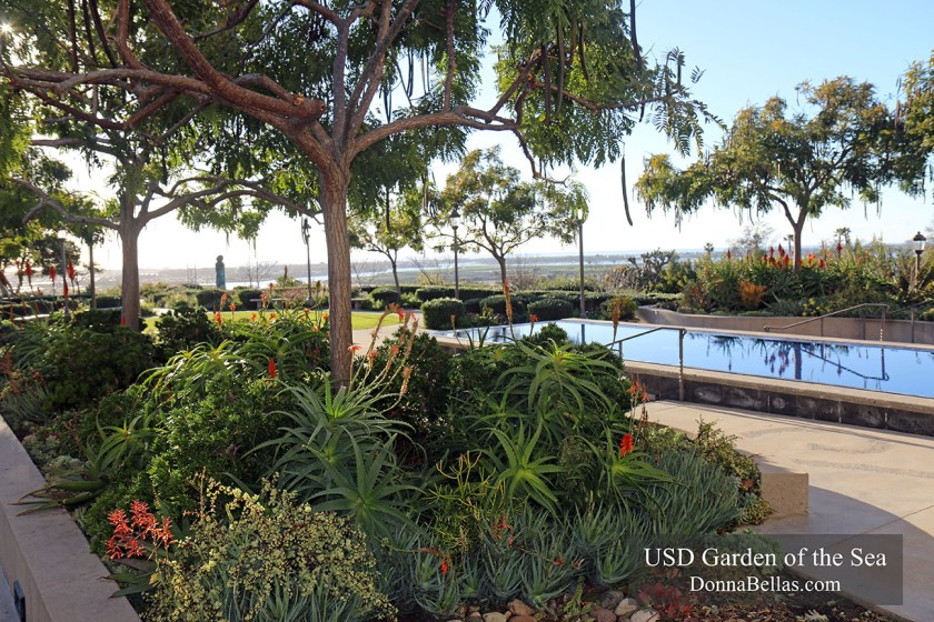 University of San Diego Garden of the Sea Photograph