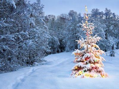 A Guided Christmas Meditation