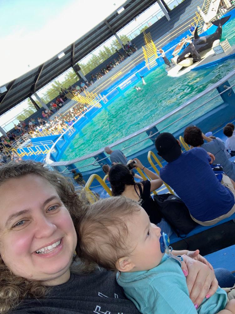 Miami Seaquarium with a Toddler