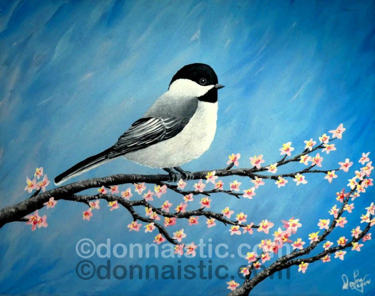 Chickadee bird on a cherry blossom branch. Original Acrylic Painting by Donna Léger.