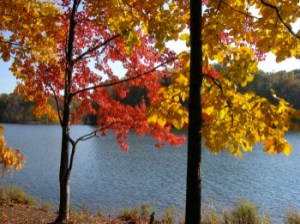 autumn_colors_Clopper_2_Lake_Seneca_Creek_SP.noaa.gov