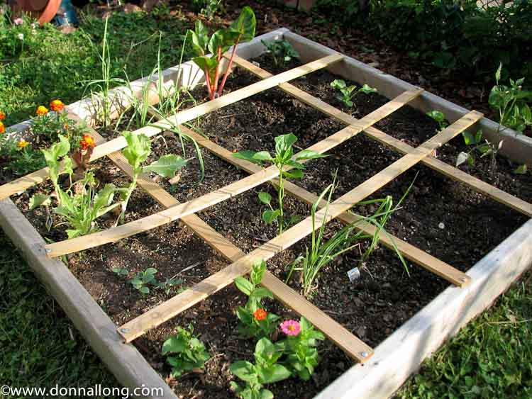 My first real Square Foot Garden in my cottage garden.