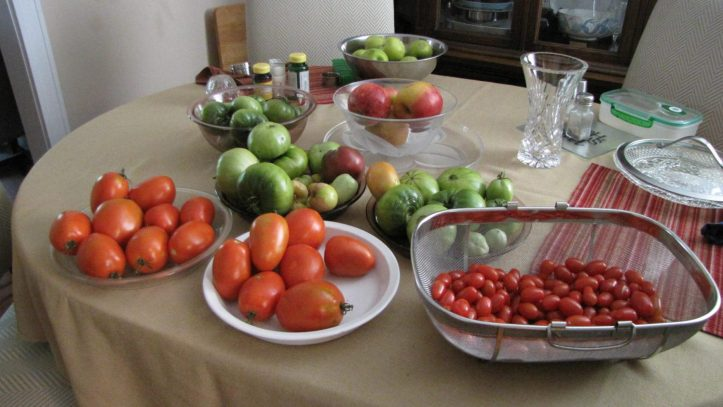 Tomatoes grown in my community garden plot.