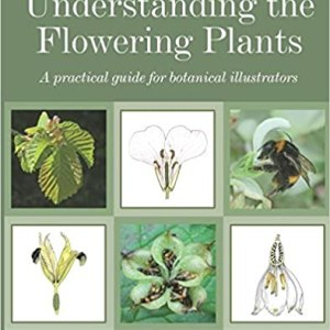cover_Understanding the flowering plants
