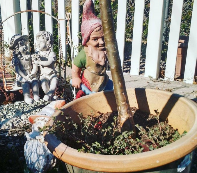 Gnome and cherubs