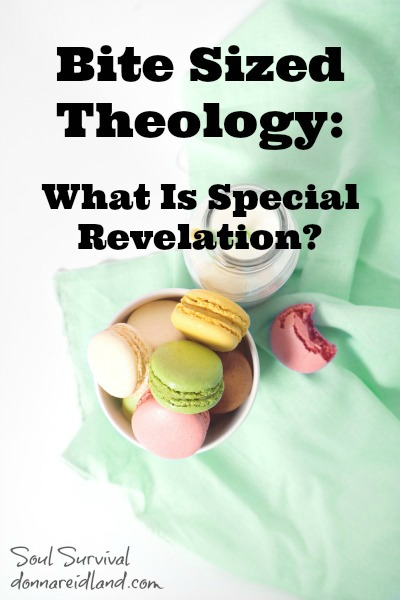 Bite Sized Theology: What Is Special Revelation? -
