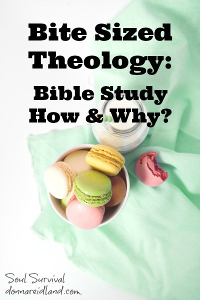 Bite Sized Theology: Bible Study - How & Why?