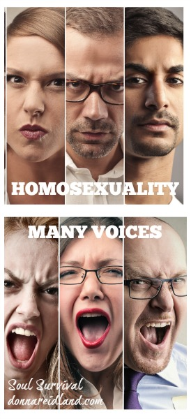 "Homosexuality: ""Many Voices"""