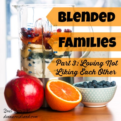 Blended Families Part 3: Loving Not Liking Each Other -