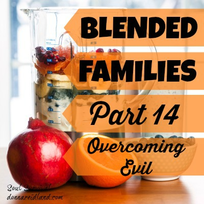 "Blended Families Part 14: Overcoming Evil - Last week in ""Blended Families Part 13: Differences Between Households,"" we began looking at ways to deal with the different rules and expectations between your household and that of your ex in a God-honoring way. We looked at how to evaluate whether or not to make an issue out of any situation and began talking about how to respond when you ex isn't willing to work on issues. This week we'll discuss more ways we can seek to live in peace and solve problems."