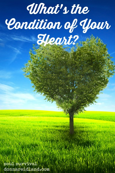 What's the condition of your heart? - What's the condition of your heart? Has the truth really penetrated and taken root? Are things that don't matter for eternity preventing real spiritual growth? Is the seed bearing fruit?