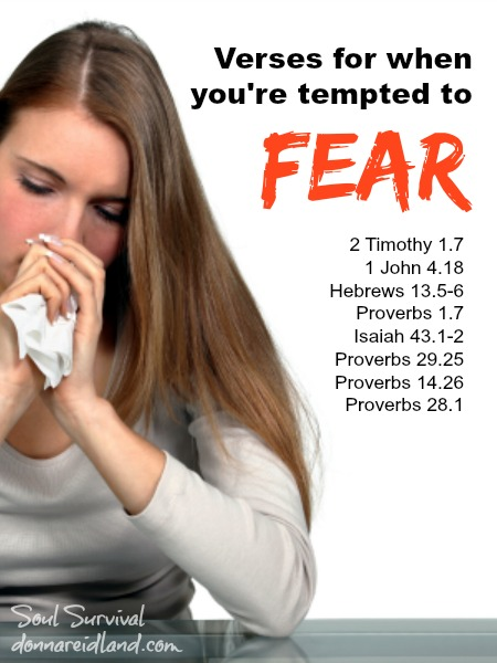 Verses for When You're Tempted to Fear