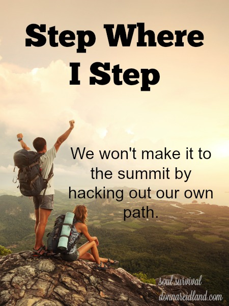 Step Where I Step - We won't make it to the summit by hacking out our own path.