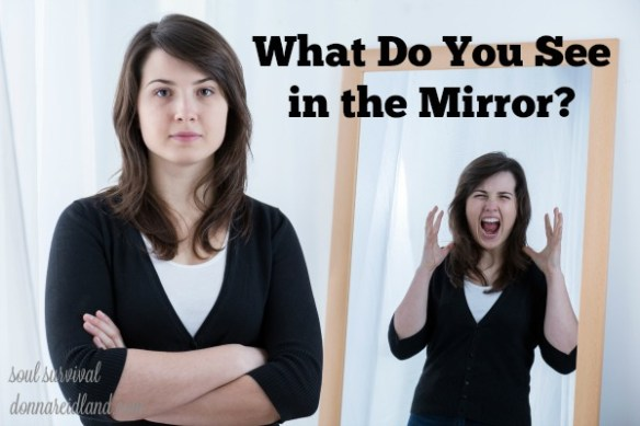 What Do You See in the Mirror? - James compared God's Word to a mirror. As we read it and meditate on the character of Christ, we can see where we're not like Him. Today's reading contains two lists: the fruit of the Spirit and the deeds of the flesh. We may think we know which one describes us, but let's look again. Contemplating the characteristics of each can help us see where we need to grow and change.