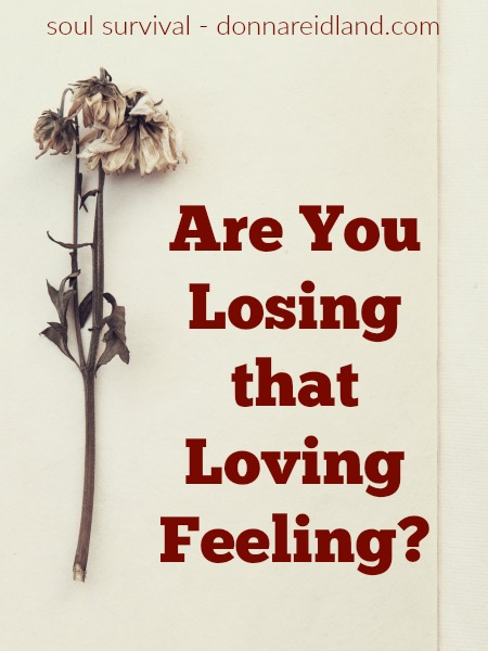 """Are you losing that loving feeling? #lovingfeeling #heart #Revelation #firstlove #graceofGod Has """"red hot love"""" turned to """"not tonight, honey""""? Haspassion given way to dirty socks on the floor, too many bills, and too little romance? There isa way to regain that feeling!"""