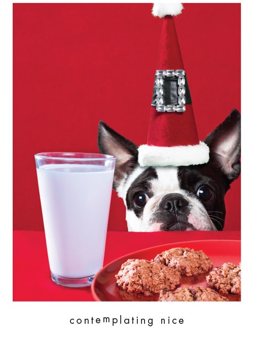 Underdog Christmas Card