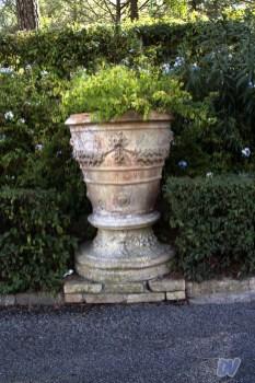 Uno dei vasi di terracotta dei vialetti